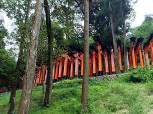 Día 4 Nara